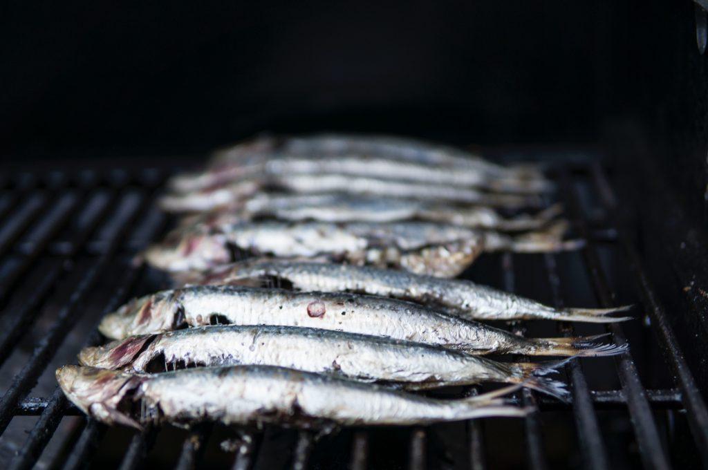 Imagem mostra algumas sardinhas lado a lado em uma grelha.